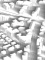 Estefania Tapias Pedraza / Measuring Urban Microclimate I